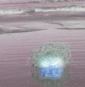 cropped-algo-mc3a1s-que-burbujas.jpg